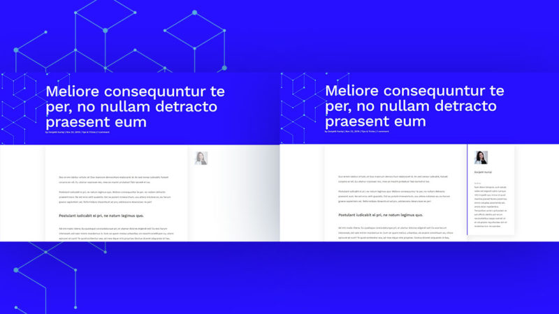 How to Design a Dynamic Author Box for Your Blog Post Template with Divi