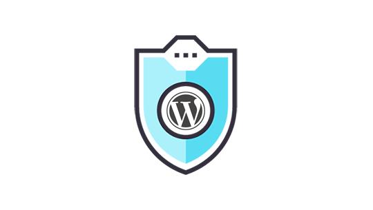 7 WordPress Security Best Practices